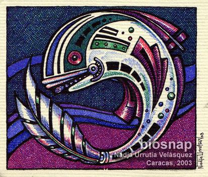 Fish, Caracas, 2003
